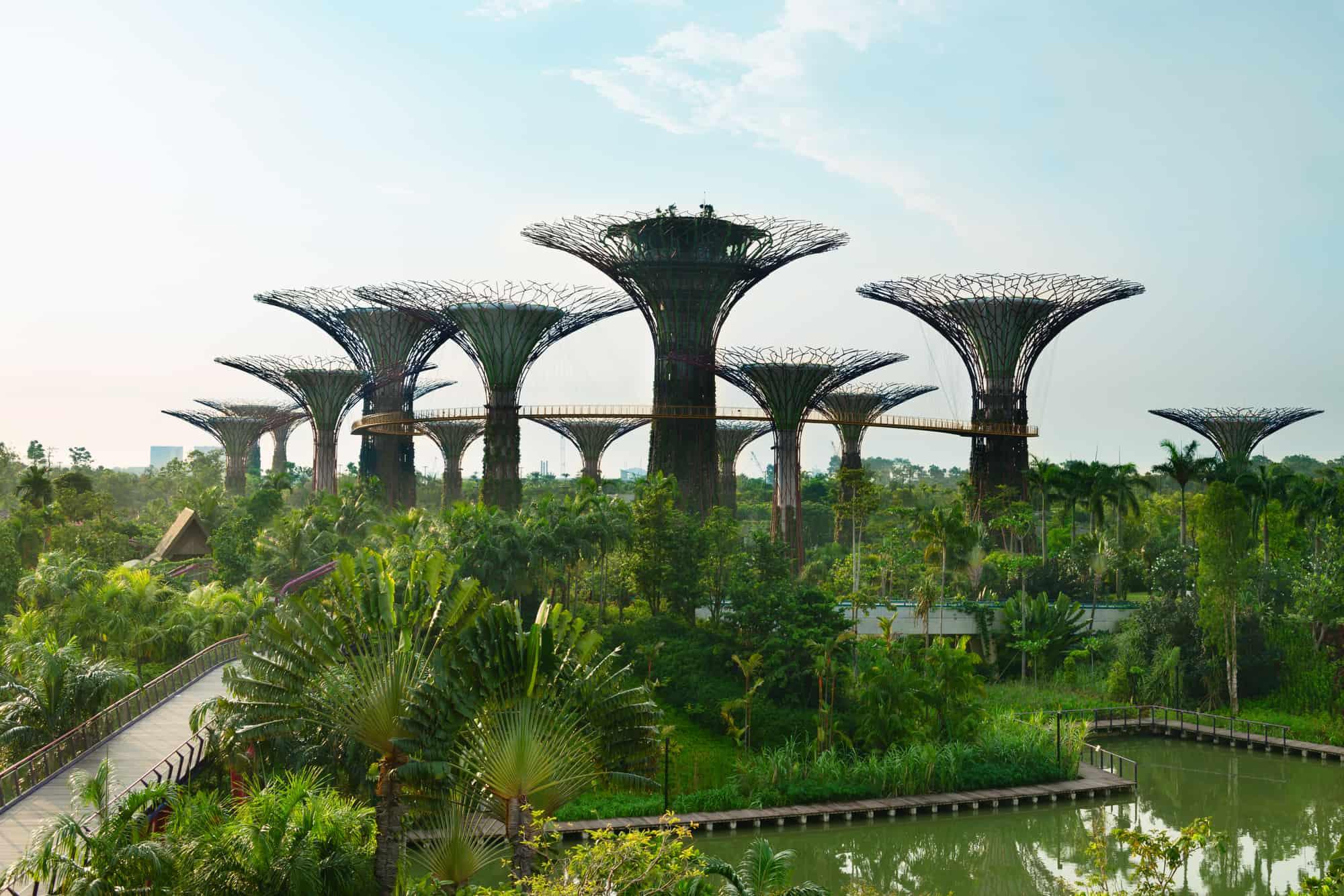 gardens by the bay i singapore