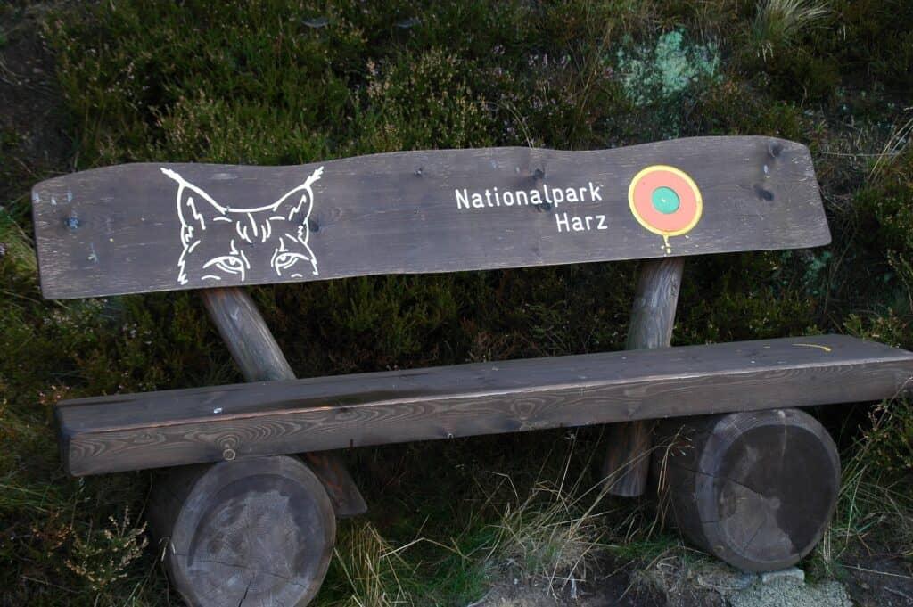 nationalpark harz i harzen i tyskland